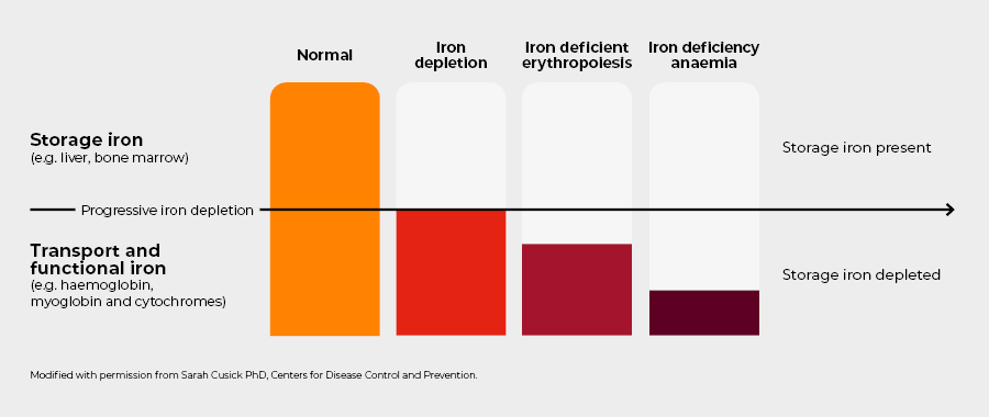 07 LRI Spectrum of iron deficiency without header - 900 px wide.png